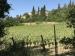 Die Toskana - unser Haus